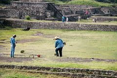 Archaeological site landscaping. Famous and majestuous Mexican archaeological site; sun pyramid during Mexico`s rainy season, green grass and flowers Royalty Free Stock Photo