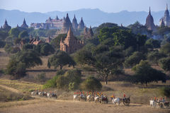 Archaeological Zone - Bagan - Myanmar (Burma) Royalty Free Stock Photography