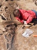 Archaeologist carefully digs up human bones Stock Image