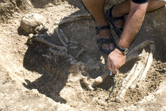 Archaeologist excavating skeleton Royalty Free Stock Photos
