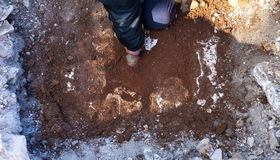 Archaeologist monitor the excavation area Stock Images