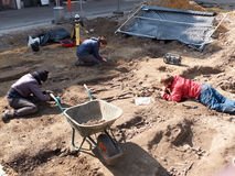 Archaeologists dig up human bones. HALLE, BELGIUM - APRIL 7: Archaeologists dig up human bones several times hundred-year-old in the center of the city, april 7 Stock Images