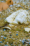 Archaeology. A shot of a broken statue in the sand Royalty Free Stock Photography