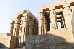 Huge columns of Luxor Temple - Egypt Royalty Free Stock Image