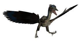 Archaeopteryx bird dinosaur landing - 3D render Stock Images