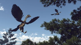 Archaeopteryx birds dinosaurs flying - 3D render Stock Photography