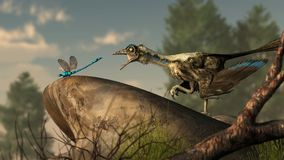 Archaeopteryx and Dragonfly stock illustration