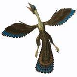 Archaeopteryx på vit vektor illustrationer