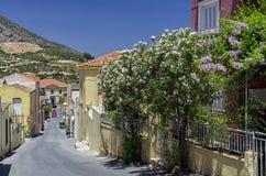 Archanes,克利特-希腊 Archanes村庄看法从那导致老城镇厅的路的 免版税库存照片