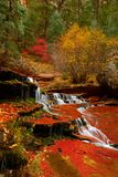 Archangel Cascades during fall in the beautiful Subway slot Canyon at Zion National Park stock photo