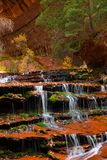 Archangel Cascades during fall in the beautiful Subway slot Canyon at Zion National Park stock photos