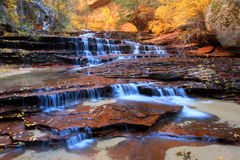 Archangel falls, Zion. Archangel waterfall in zion national park, utah Royalty Free Stock Photo