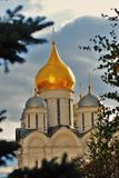 Archangels cathedral of Moscow Kremlin seen throught trees Stock Photo