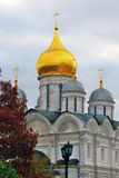 Archangels church. Moscow Kremlin. Red autumn tree foliage. Royalty Free Stock Images