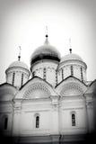 Archangels church. Moscow Kremlin. Stock Image