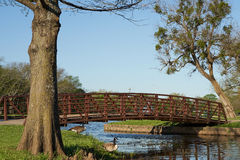 Arched foot bridge over blue water with trees and geese royalty free stock images