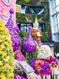 Arched orchids festival in siamparagon ,thailand Stock Photos