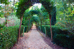 Arched pathway Stock Image