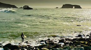 Arched Rock Beach. Surfer studying waves at Arched Rock beach, Sonoma County, California, USA Royalty Free Stock Photography
