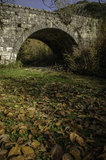 Arched stone bridge in country Stock Images