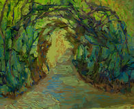 Arched Trees Form A Covered Pathway Royalty Free Stock Photography