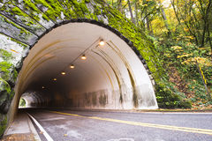 Arched tunnel through the rock in autumn forest Royalty Free Stock Photos