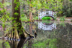 Arched White Bridge in Swamp Garden royalty free stock images