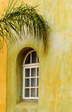 Arched window with palm branch Stock Photography