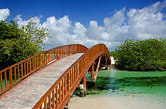 Free Arched Wooden Bridge Royalty Free Stock Photos - 20805948
