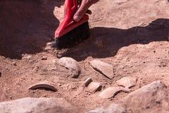 Archeolog pracuje na miejscu, ręka z muśnięciem obrazy stock