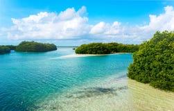 Archeologia i natura Yukatan półwysep zdjęcie royalty free