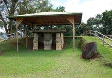 archeological πάρκο SAN agustin Στοκ φωτογραφίες με δικαίωμα ελεύθερης χρήσης