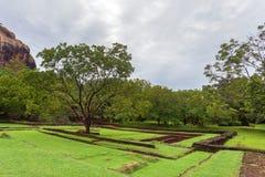 Archeological περιοχή Sigiriya Στοκ Εικόνα