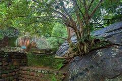 Archeological περιοχή Sigiriya Στοκ Φωτογραφία