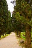 Archeological area of Aquileia Royalty Free Stock Photo