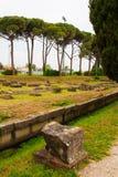 Archeological area of Aquileia Royalty Free Stock Photos