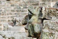 archeological copan honduras park Royaltyfria Bilder
