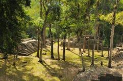 archeological copan park Royaltyfri Fotografi