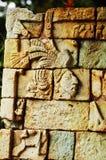 archeological copan parkruinas Royaltyfri Fotografi