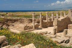 archeological cyprus paphoslokal Arkivbild