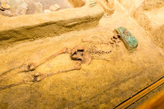 Archeological excavations of human burial. Royalty Free Stock Photography