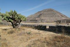 archeological henne teotihuacan unesco-värld för lokal Fotografering för Bildbyråer