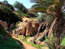 archeological roman lokaltipasa royaltyfria foton