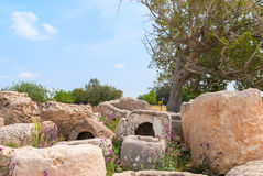 Archeological ruins in Beit Guvrin, Israel. Archeological ruins ancient buildings in Beit Guvrin national Park, Israel Royalty Free Stock Image