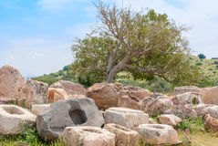 Archeological ruins in Beit Guvrin, Israel. Archeological ruins ancient buildings in Beit Guvrin national Park, Israel Stock Photography