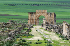 Archeological Site 1 Stock Photo