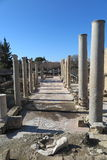 ARCHEOLOGICAL SITE IN PAPHOS, CYPRUS Royalty Free Stock Photo