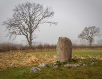 Karlevistenen. Archeological stone with runes as found on the Swedish island of Öland stock image