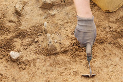 Archeological tools, Archeologist working on site, hand and tool. Royalty Free Stock Photos