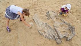 Archeologiczna ekskawacja dinosaur kości zbiory wideo